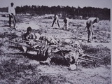 Burial Party on Battlefield of Cold Harbor  1864