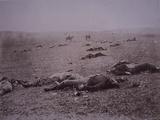Dead Soldiers on the Battlefield of Getyysburg  1863