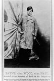 Payne  1865