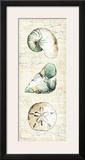 Ocean Prints VI