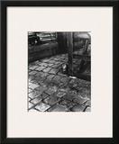 Dans la Cours  255 Avenue Alesia  c1947