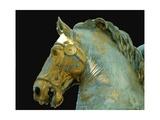 Detail from the Equestrian Statue of Marcus Aurelius