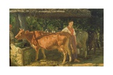 Three Cows Feeding  1860