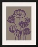 Tulip  no 14
