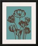 Tulip  no 5