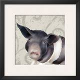 Pig Posing