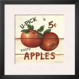 U-Pick Apples  Five Cents