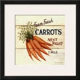 Farm Fresh Carrots