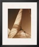 Windward Sail II
