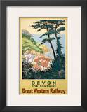 Devon for Sunshine