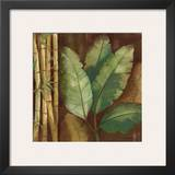 Bamboo & Palms I