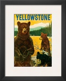 Yellowstone Go Greyhound c1960s