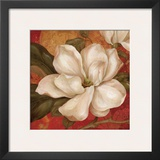 Magnolia on Red II