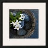 Vasque et Fleures