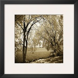 Hopewell Shores Sepia Sq I