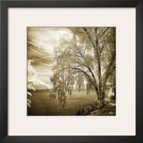Hopewell Shores Sepia Sq II