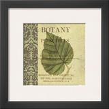 Botany Principles III