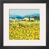 Lemon Grove  Tuscany