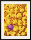 Quack  Quack I
