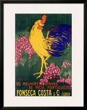 Fonseca Costa & Co