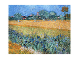 Vincent Van Gogh (1853-1890) Dutch Painter Field with Flowers Near Arles 1888 Van Gogh…