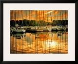 Marina Sunrise I