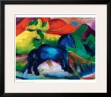 Blue Ponny