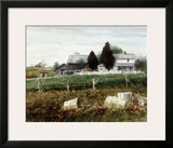 Amish Hills