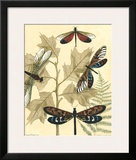Graphic Dragonflies in Nature I