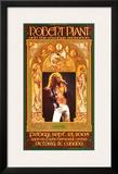 Robert Plant Victoria Concert