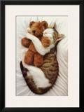 Cat's Pet