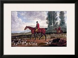 Horse Fox Hunt II