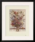 Twelve Months of Flowers  1730  February