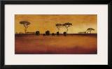 Serengeti II