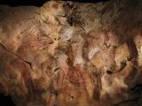 Stone-age Cave Paintings  Asturias  Spain