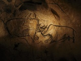 Stone-age Cave Paintings  Chauvet  France