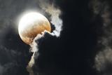 Partial Lunar Eclipse Papier Photo par Detlev Van Ravenswaay