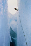 Scientist Climbing Down Into Chasm  Antarctica