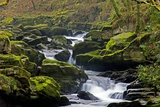 River And Moss-covered Boulders