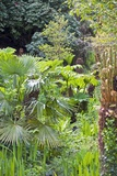 The Lost Gardens of Heligan  UK