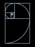 Fibonacci Spiral  Artwork