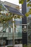 Solar-powered Street Light In Daejeon