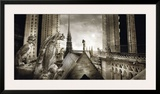 Gargouilles de Notre Dame  Paris