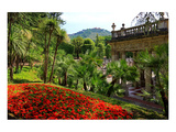 Spa Gardens with View of Montecatini Alto at Montecatini Thermal Baths  Tuscany  Italy