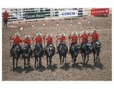 Royal Canadian Mounted Police at Calgary Stampede  Calgary  Alberta  Canada