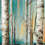 Birch Forest II