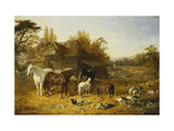 A Farmyard with Horses and Ponies  Berkshire