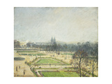 The Tuileries Ponds  Mist