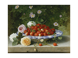 Strawberries in a Blue and White Buckelteller with Roses and Sweet Briar on a Ledge