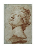 Study of the Head of Venus  After the Antique